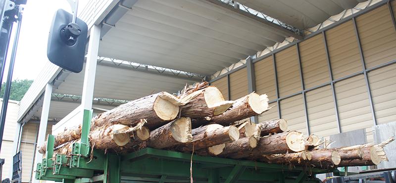 原木・間伐材の買い取り